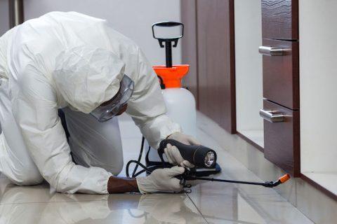 ¿Cuál es nuestro método para el control de plagas en Panamá?