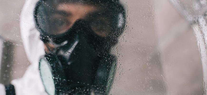 Terminix: Fumigación y control de plagas en panamá